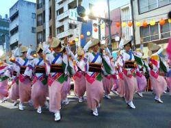 徳島県《阿波踊り》