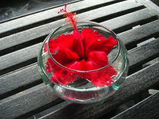 机の上のお花