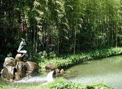 ピノッキオ公園