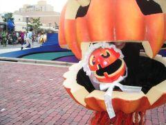 かぼちゃの中身